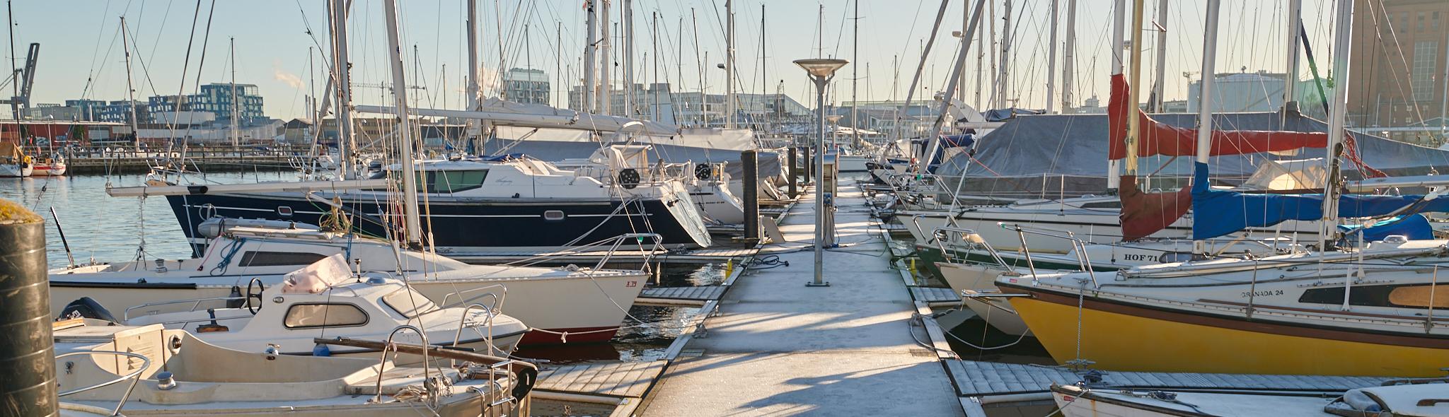 Vinter i Svanemøllehavnen