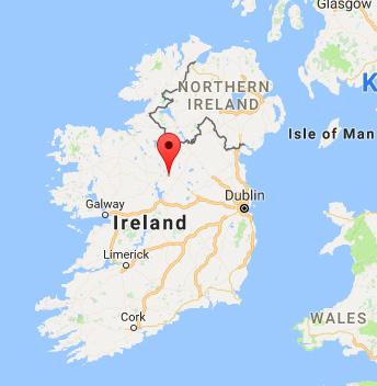 De strandede hvaler rejser til Irland for at synge og opleve